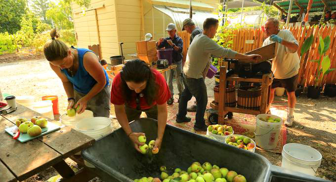 Apple waste eliminated with Slow Food Russian River's press