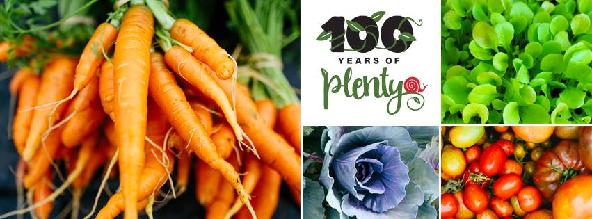 100 Years of Plenty Campaign