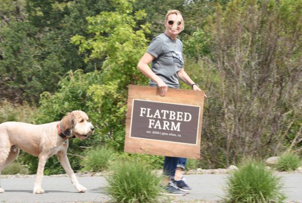 Flatbed Farm Bounces Back After Fires with Sofie Dolan opening the farm stand for business